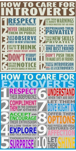 extroverts introverts